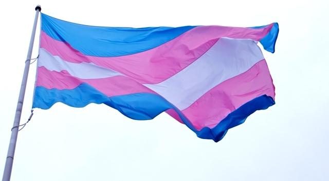 trans flagg