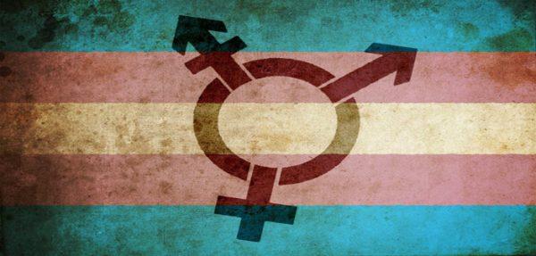transrodnost-zastava