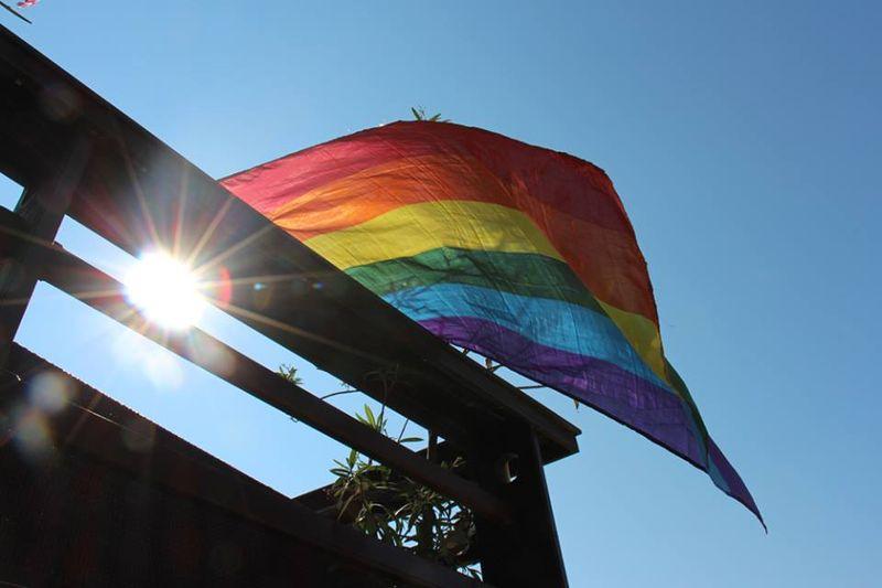 homofesta02_naslovna